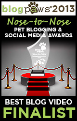 BlogPaws 2013 Nose-to-Nose Pet Blogging and Social Media Awards - Winner: Best Blog Video