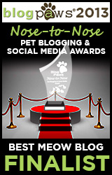 BlogPaws 2013 Nose-to-Nose Pet Blogging and Social Media Awards - Winner: Best Meow Blog