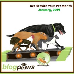 BlogPaws_Get_Fit