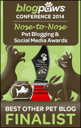 BEST-OTHER-PET-BLOG-n2n-FINALISTbadge