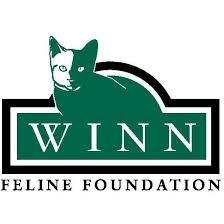 winn_feline