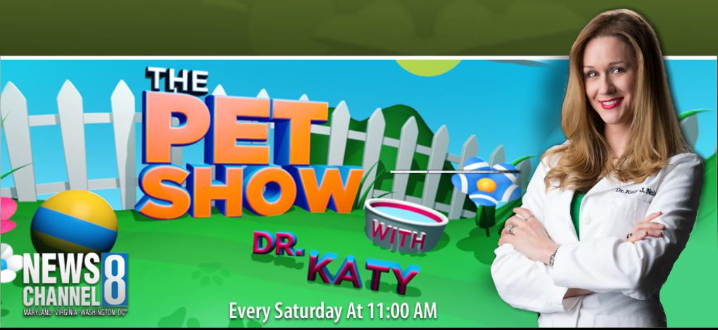 dr katy