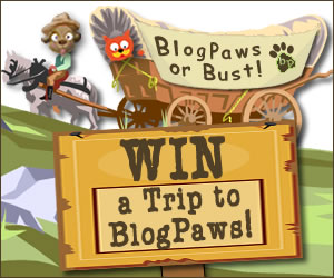 BlogPaws Or Bust 2015