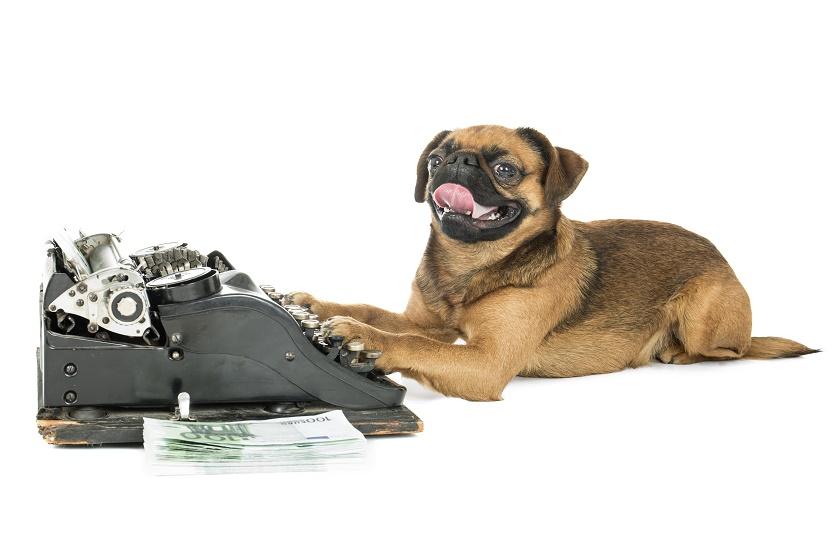 dog on typewriter