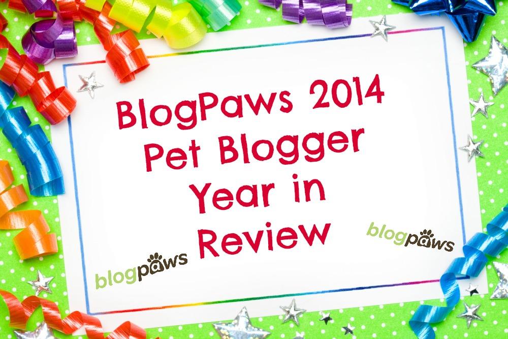 blogger year