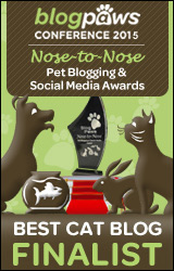 BEST-CAT-BLOG-n2n2015-FINALISTbadge