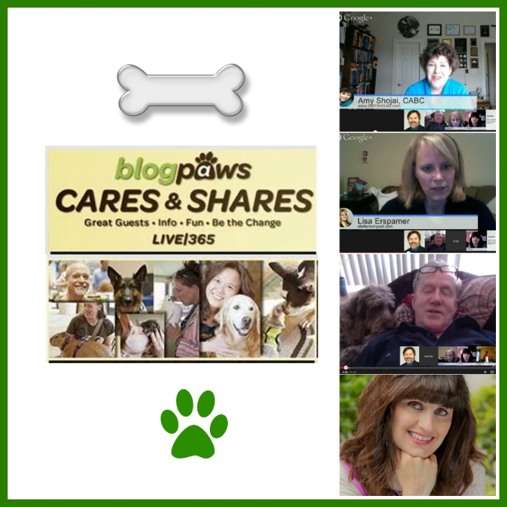 blogpaws cares