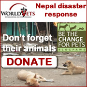 Nepal Earthquake - WorldVets Disaster Response - Donate