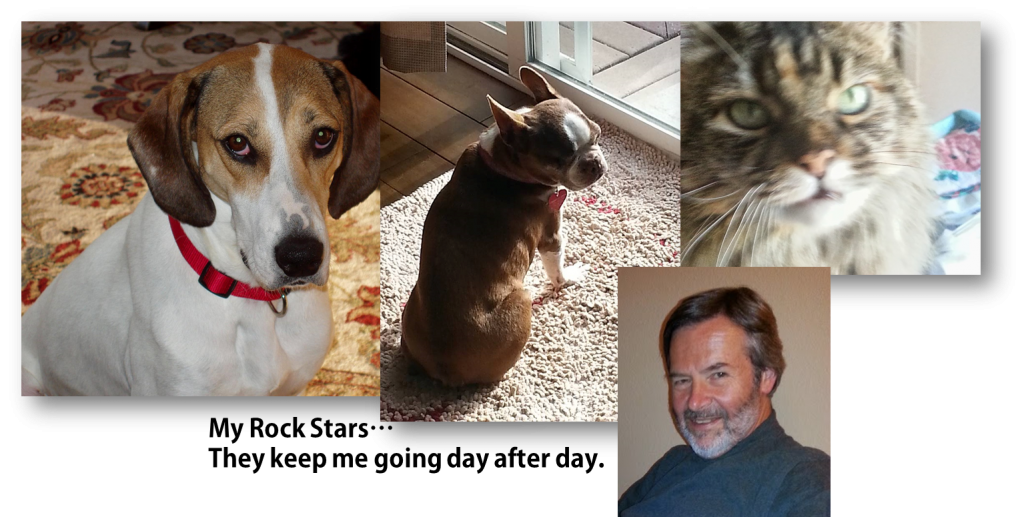 Tom Collins Molly the cat Emily the hound Olive the Boston