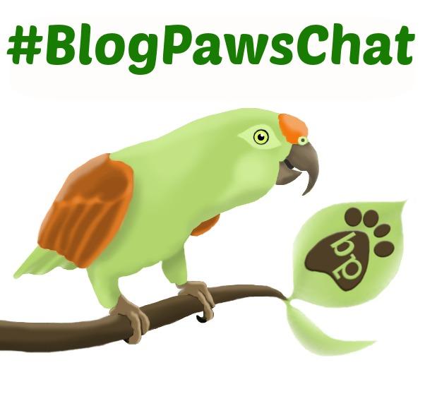 RSVP for BlogPawsChat