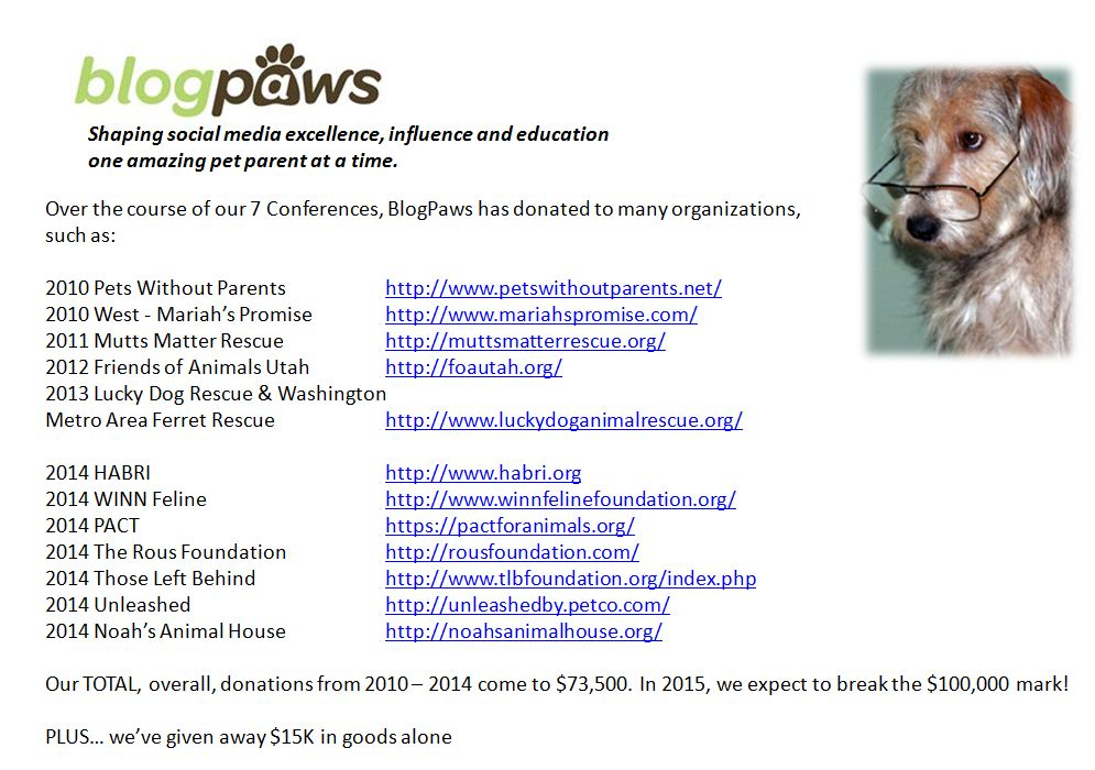 BlogPaws Be the Change for Pets Stats