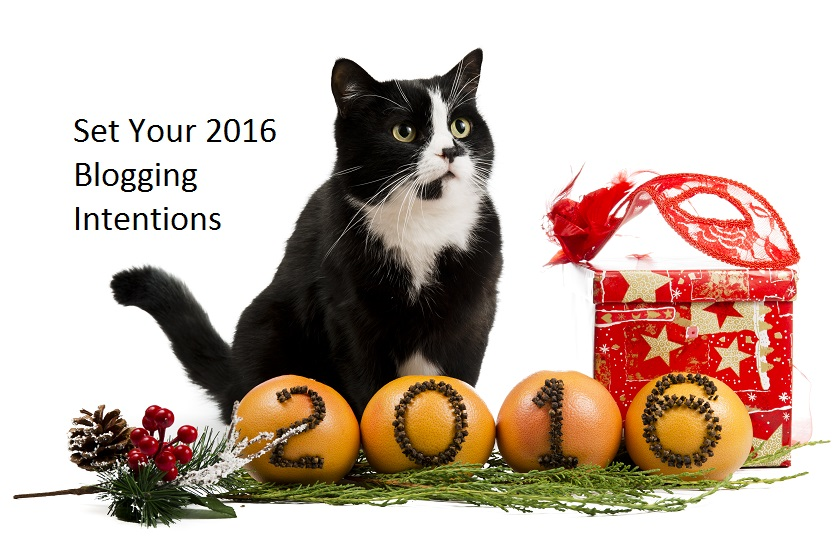 pet blogging resolutions