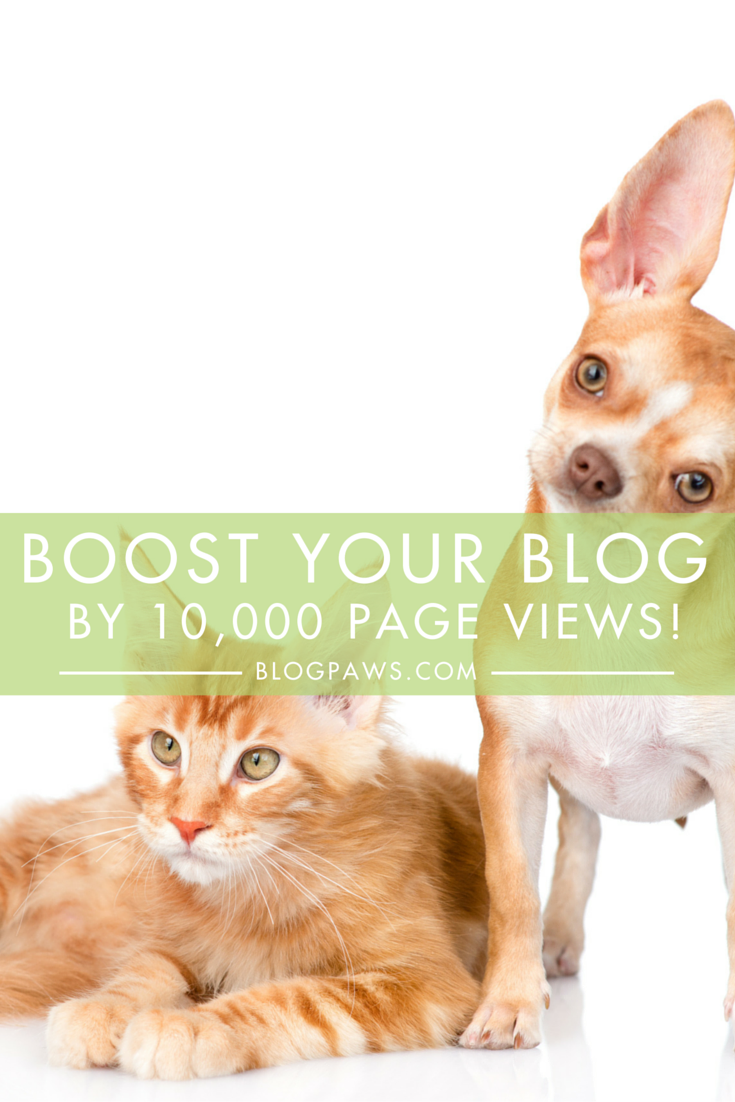 Boost Your Blog By 10,000 Page Views