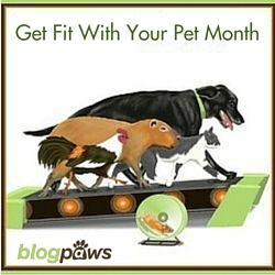 Get Fit With Your Pet Month BlogPaws
