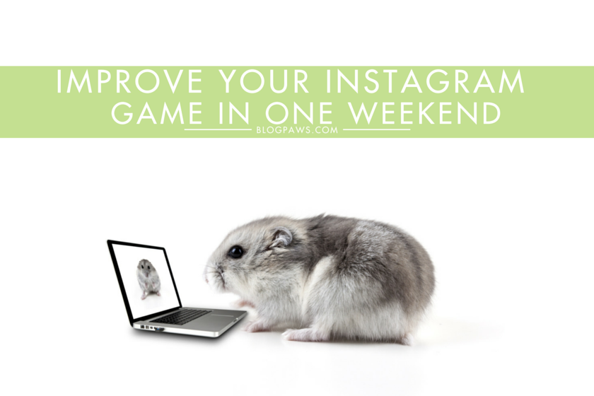 Improve your Instagram game this weekend