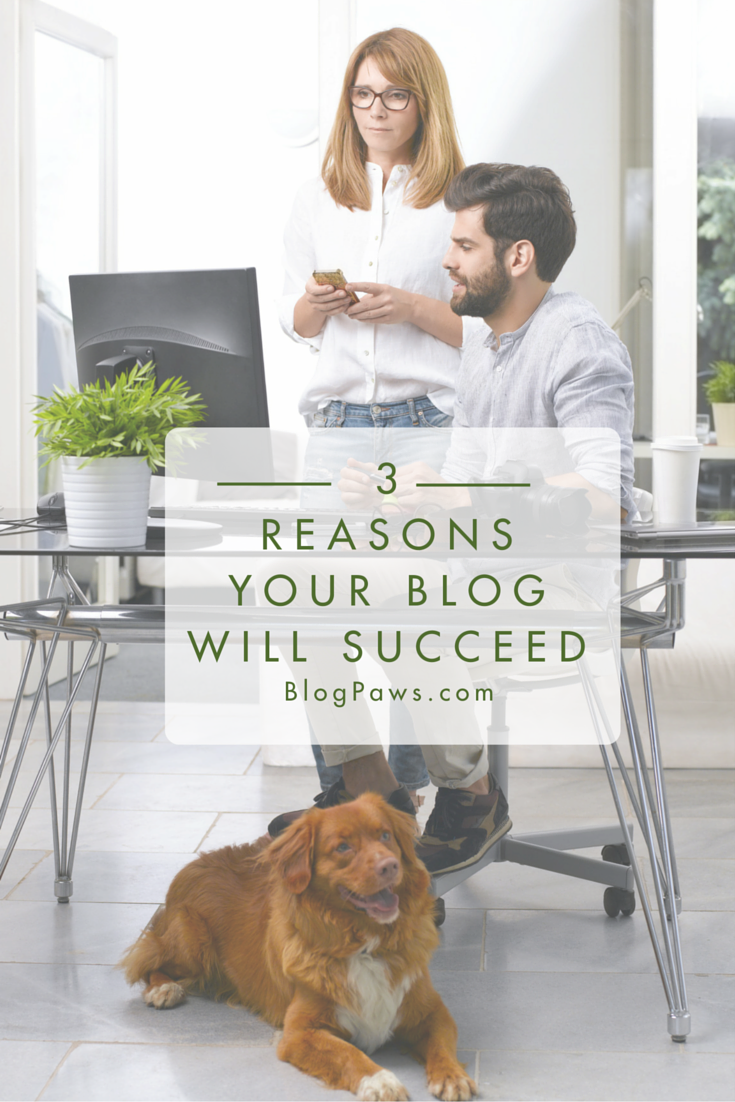3 Reasons Your Blog Will Succeed