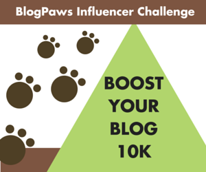 BlogPaws Boost Your Blog 10K Challenge