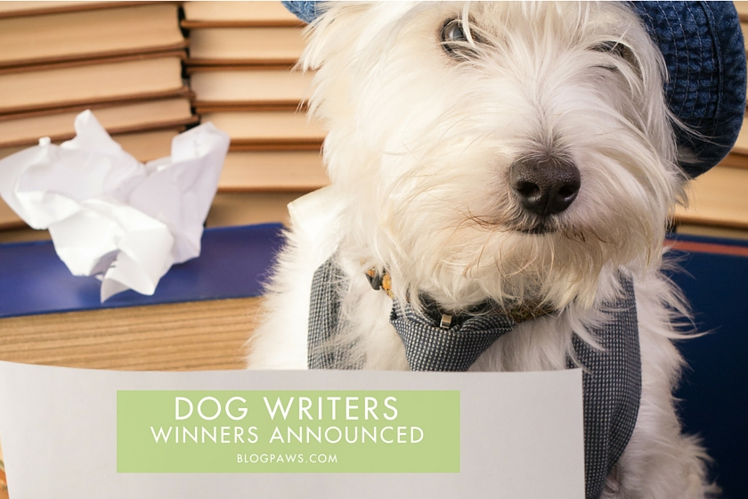 DOG WRITERS hero