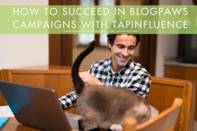 How to Use TapInfluence for BlogPaws campaigns