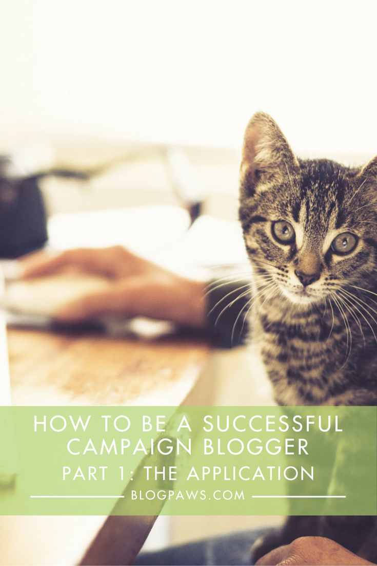 How to be a successful campaign blogger- The dos and don'ts of the application