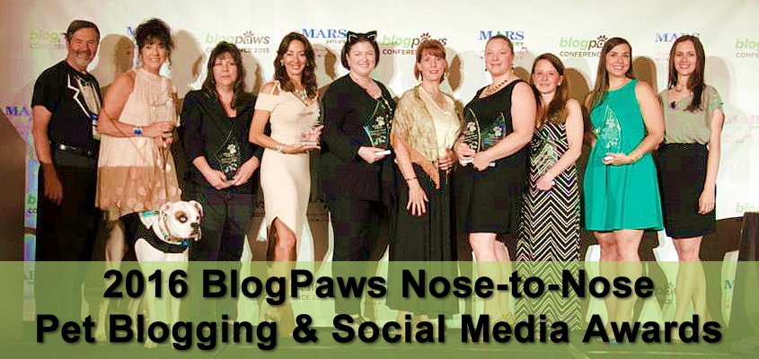2016 Nose-to-Nose Awards - image featuring 2015 winners