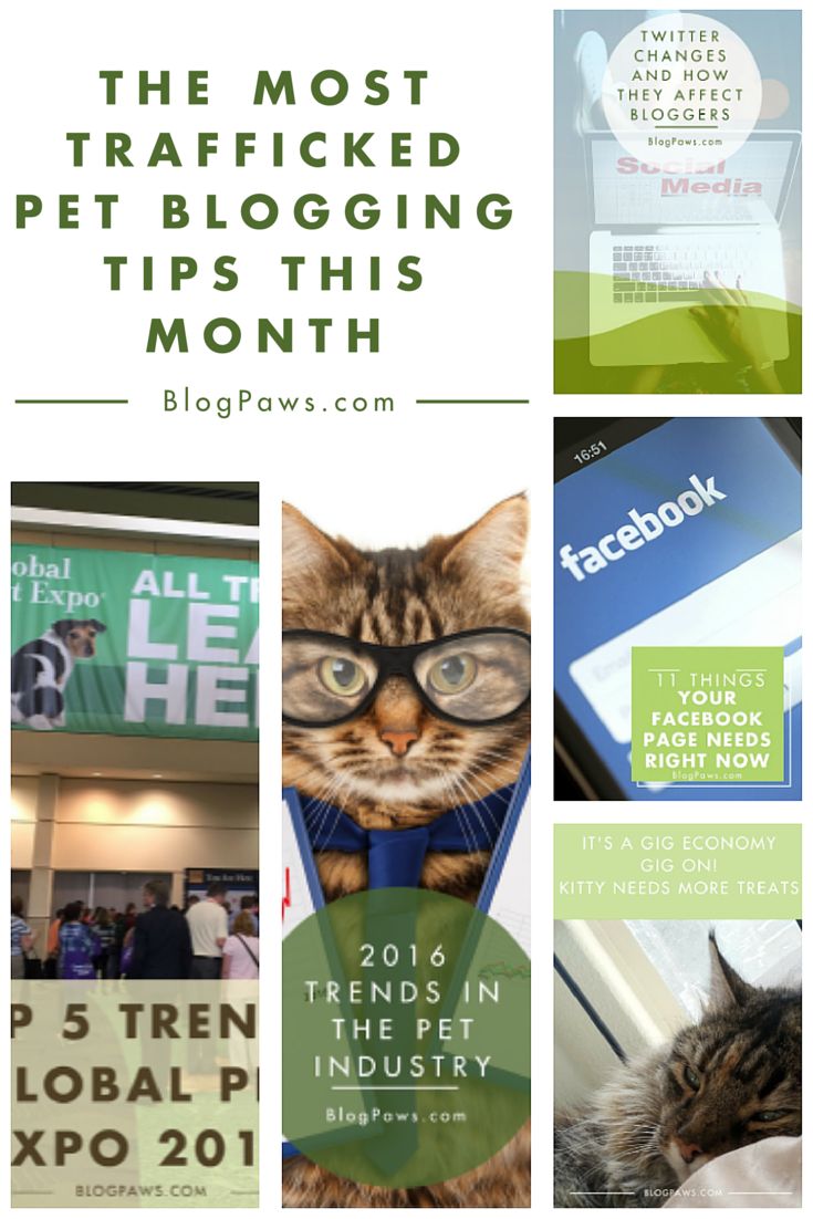 March pet blogging tips