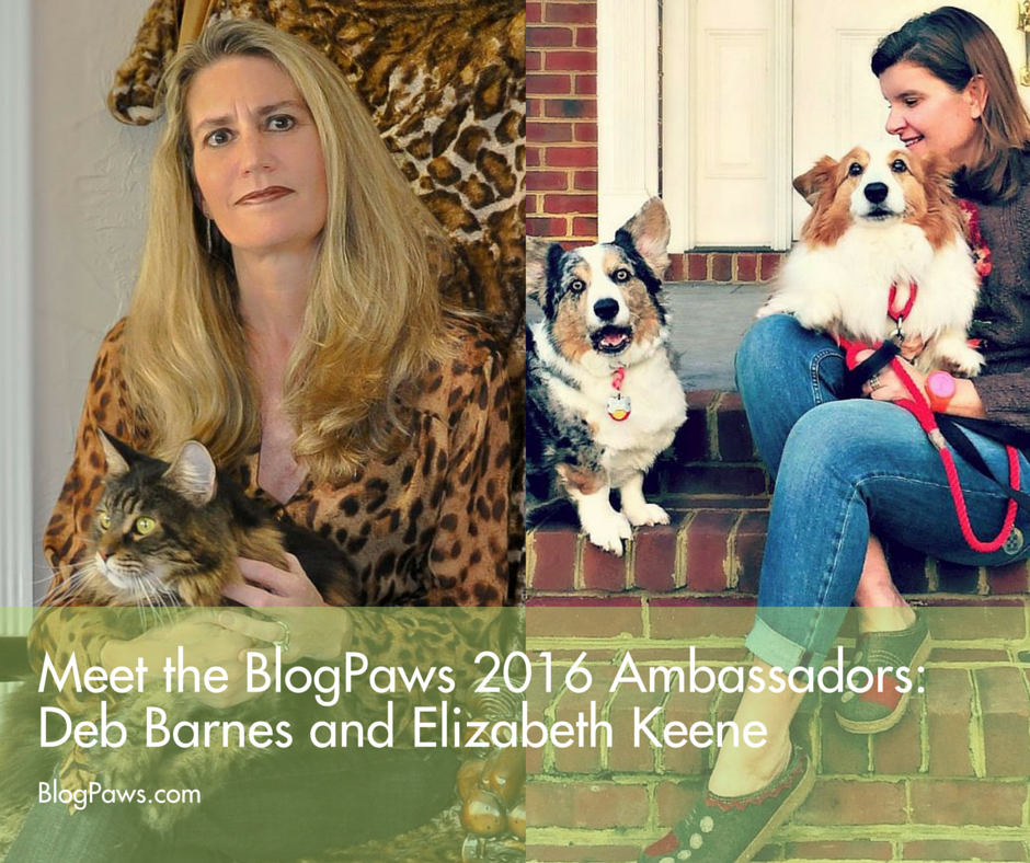 Meet the Ambassadors- Deb and Elizabeth