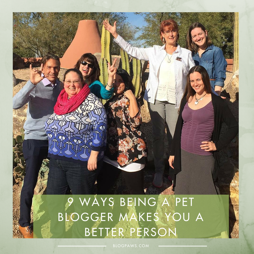 9 Ways Being a Pet Blogger Makes You A Better Person