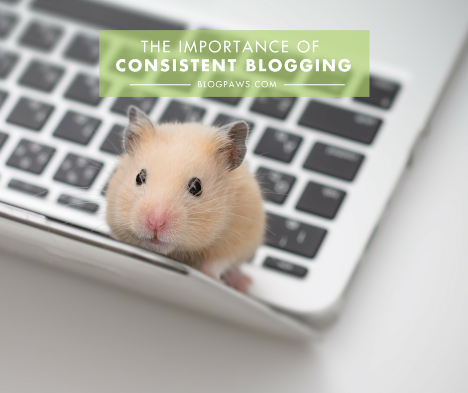 The importance of consistent blogging