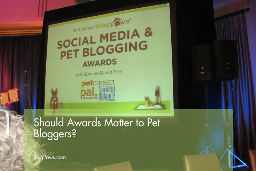 Pet blogging awards