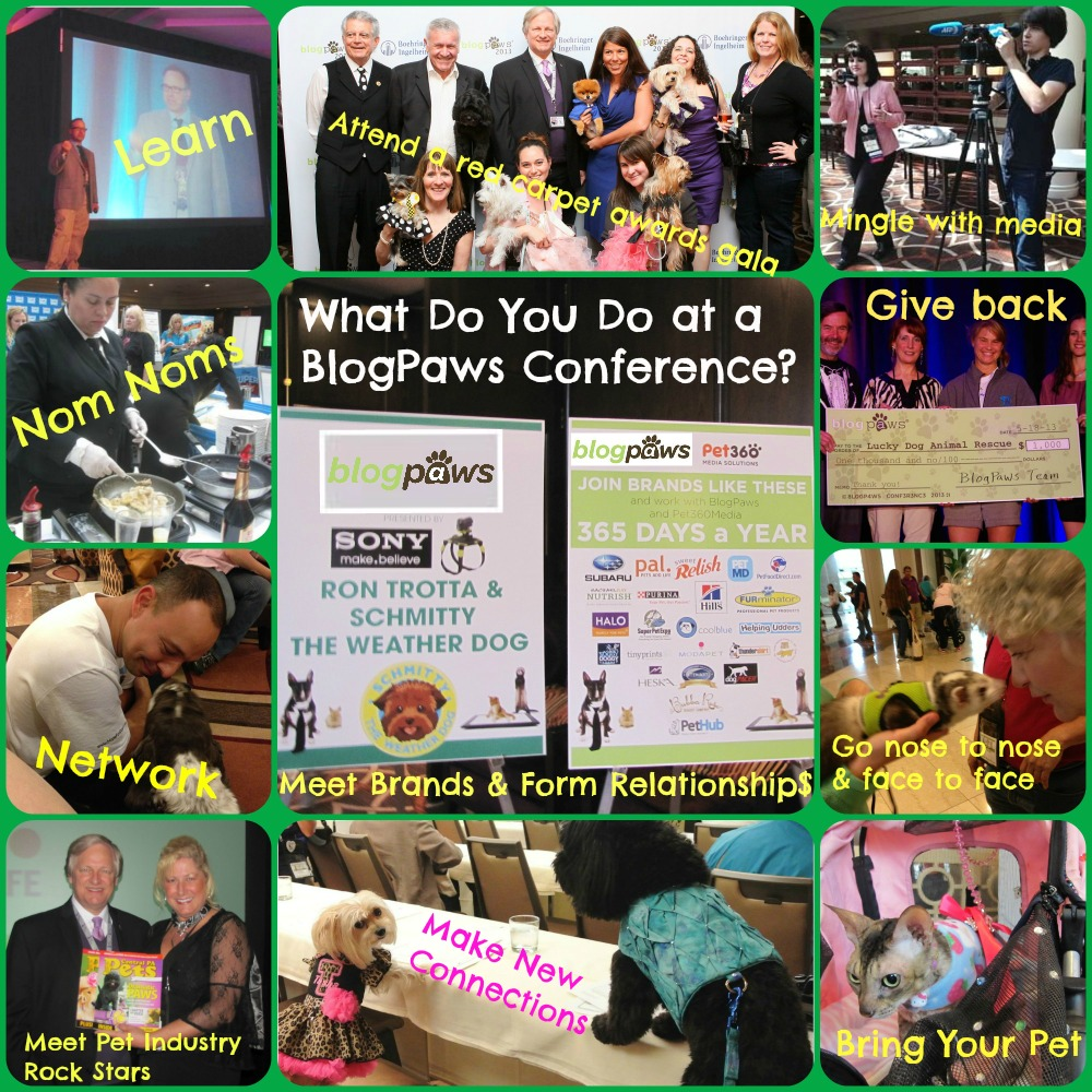 BlogPaws Conferences