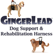 GingerLead - Dog Support & Rehabilitation Harness