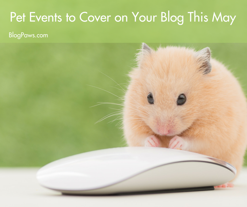 Pet Events to Cover on Your Blog This May