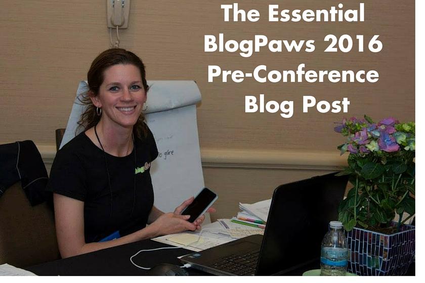 BlogPaws News