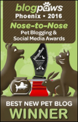 BlogPaws 2016 Nose-to-Nose Awards - Best New Pet Blog Winner