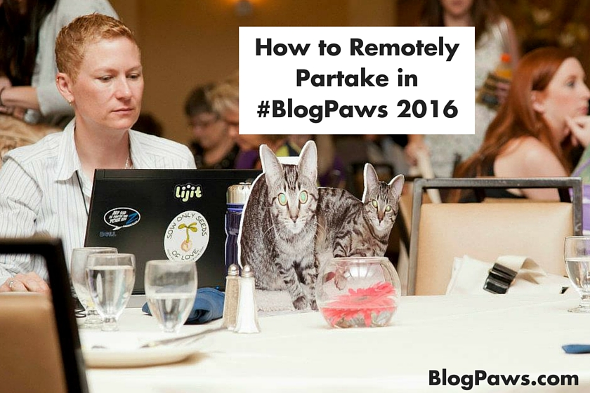 How to Remotely Partake in #BlogPaws 2016