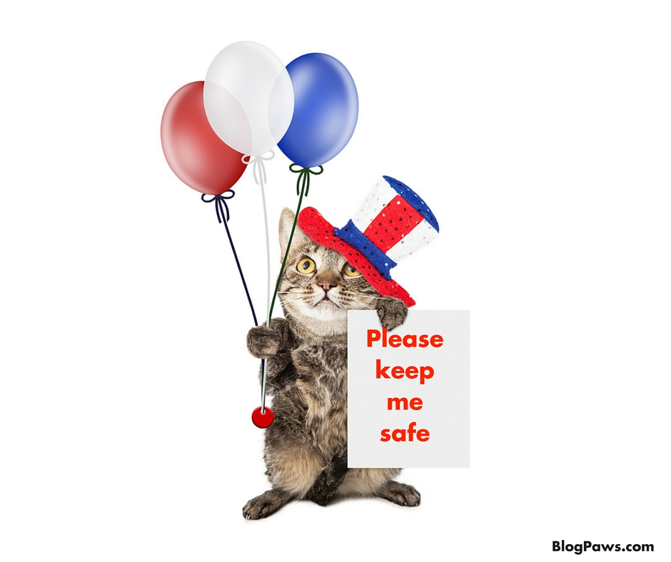 Pets fourth of July tips