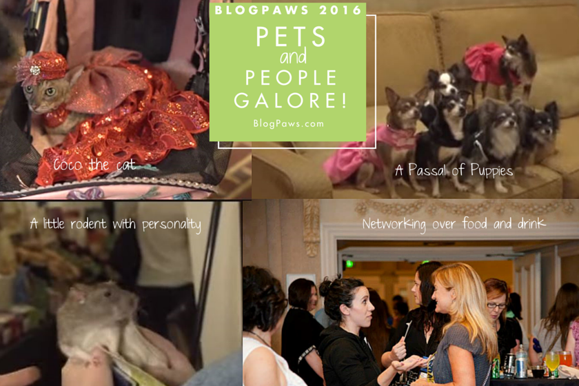 pets and people galore at BlogPaws 2016