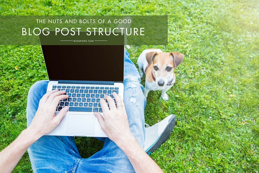 Blog post structure tips and tricks