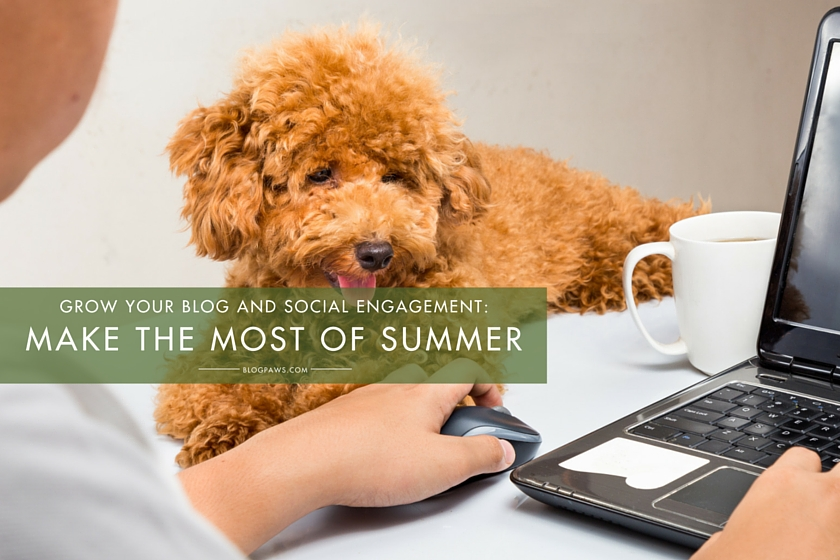 Grow your blog and social engagement by making the most of the summer slow-down