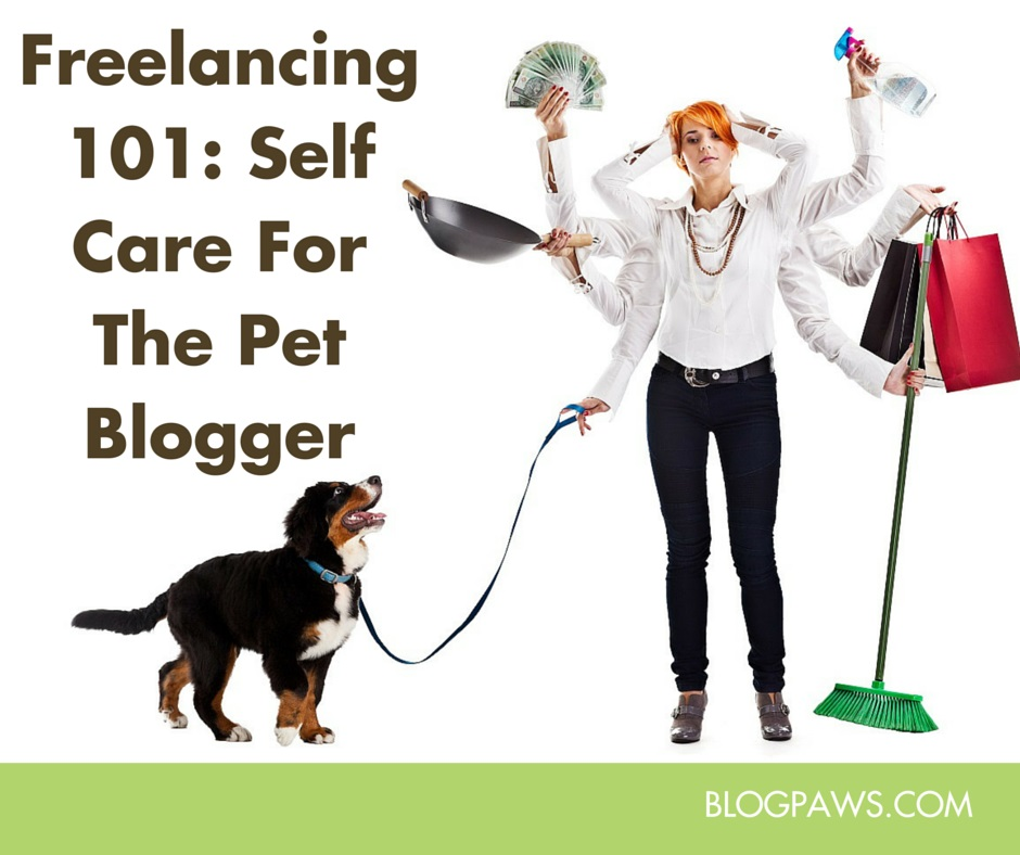 Freelancing 101 self care for the stressed out pet blogger