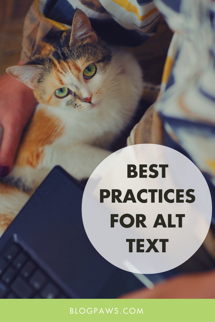 Best Practices for Alt Text