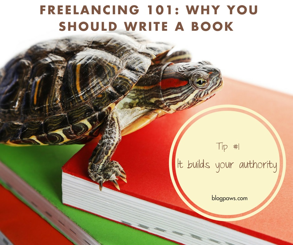 write a book to build your pet blogger authority