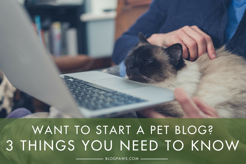 Want to Start a Pet Blog- Here are 3 Things You Need to Know