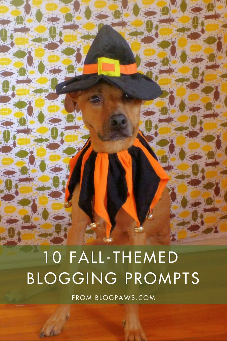 10 Fall Blogging Prompts | BlogPaws.com