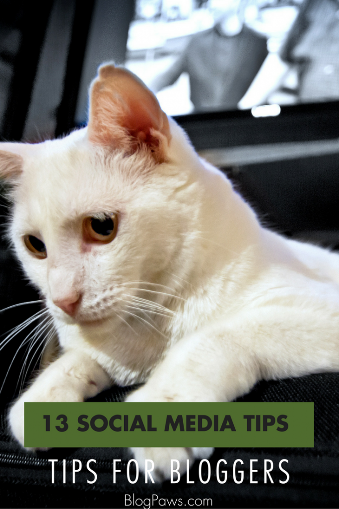 Social Media Tips for Bloggers