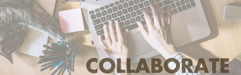 BlogPaws Collaborate