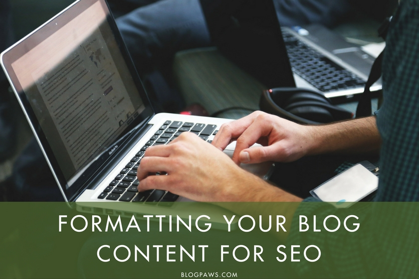Formatting Your Blog Content for SEO | BlogPaws.com