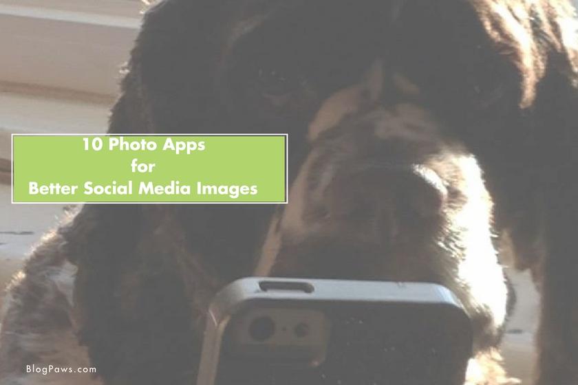 Hero image Photo Apps