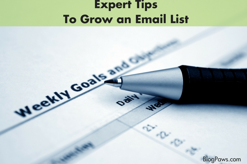 Experts Tips to Grow an Email List